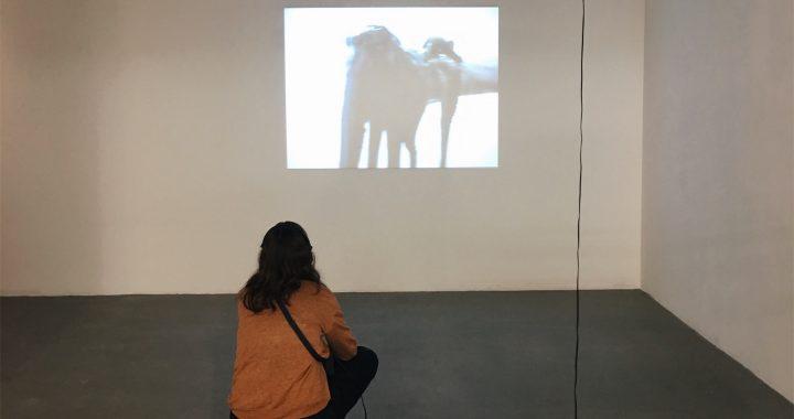"""Besucherin sitzt vor Video in der Ausstellung """"The Influencing Machine"""""""